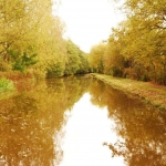 Canal Oct 12 (91)